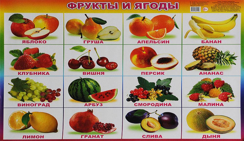 после приема фрукты с картинками и названиями ответил претензии