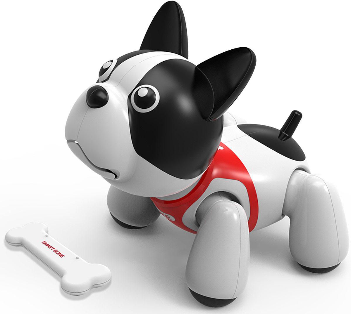 картинки про робота собаку этом сразу